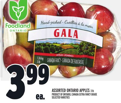 Assorted Ontario Apples 3 Lb Product Of Ontario - Canada Extra Fancy Grade