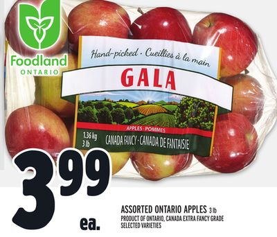 Foodland Ontario Assorted Ontario Apples 3 Lb