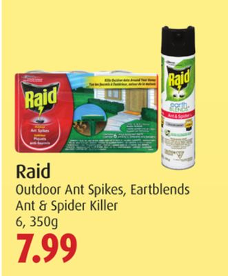 Raid Outdoor Ant Spikes - Eartblends Ant & Spider Killer