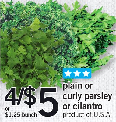 Plain Or Curly Parsley Or Cilantro