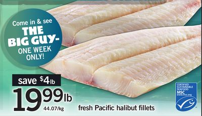 Fresh Pacific Halibut Fillets