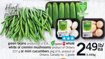 Green Beans - Organic Whole White or Cremini Mushrooms - 227 g or Mini Cucumbers