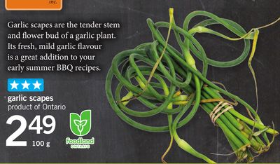 Garlic Scapes - 100 g