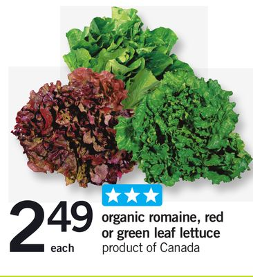 Organic Romaine - Red Or Green Leaf Lettuce