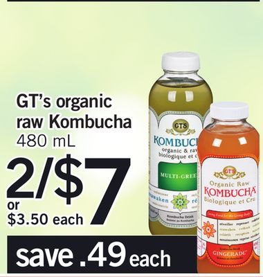 Gt's Organic Raw Kombucha - 480 Ml