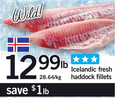 Icelandic Fresh Haddock Fillets