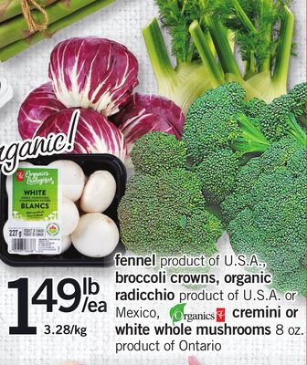 Fennel Product Of U.S.A. - Broccoli Crowns - Organic Radicchio Product Of U.S.A. Or Mexico - Cremini Or White Whole Mushrooms - 8 Oz. Product Of Ontario