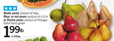 Abate Pears - Bosc Or Red Pears - Or Rocha Pears