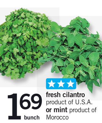 Fresh Cilantro Or Mint - Bunch