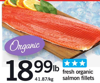 Fresh Organic Salmon Fillets