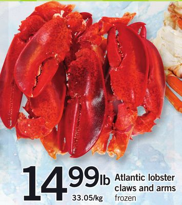 Atlantic Lobster Claws And Arms