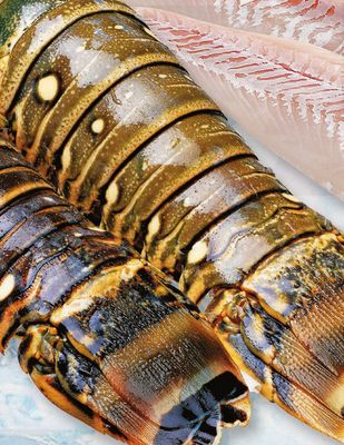 Rock Lobster Tail - 6-7oz