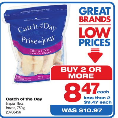 Catch Of The Day Tilapia Fillets - 750 g
