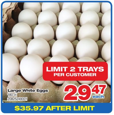 Large White Eggs - 180 Ct