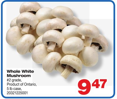 Whole White Mushroom - 5 Lb Case