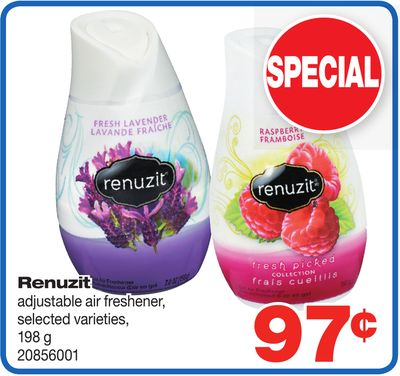Renuzit Adjustable Air Freshener - 198 g