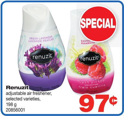 Renuzit Adjustable Air Freshener.198 g