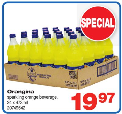 Orangina Sparkling Orange Beverage - 24 X 473 ml