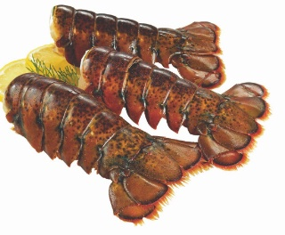 Lobster Tail on sale | Salewhale.ca