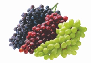 Bred - Green or Black Seedless Grapes