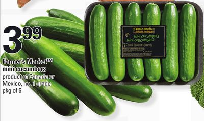 Farmer's Market Mini Cucumbers - Pkg of 6