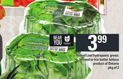 Naked Leaf Hydroponic Green - Mixed Or Trio Butter Lettuce - Pkg of 2