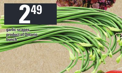 Garlic Scapes - Bunch