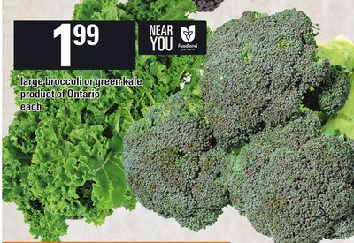 Large Broccoli Or Green Kale