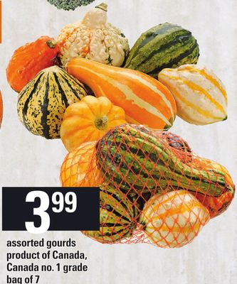 Assorted Gourds - Bag of 7