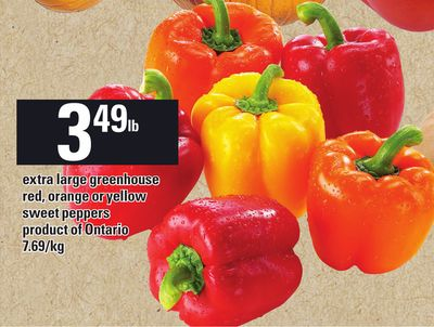Extra Large Greenhouse Red - Orange Or Yellow Sweet Peppers