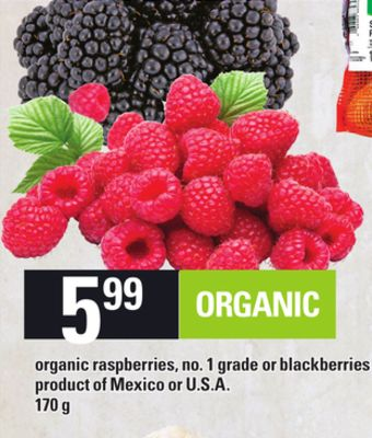 Organic Raspberries - Or Blackberries - 170 g