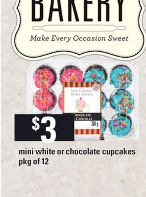 Mini White Or Chocolate Cupcakes - Pkg of 12