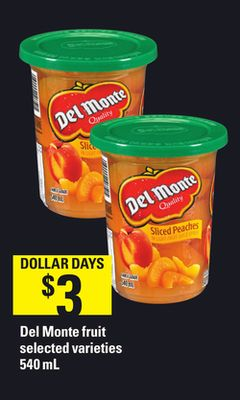 Del Monte Fruit - 540 mL