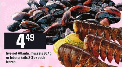 Live Net Atlantic Mussels - 907 G Or Lobster Tails - 2-3 Oz Each