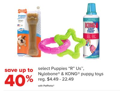 Select Puppies ''R Us - Nylabone & Kong Puppy Toys""